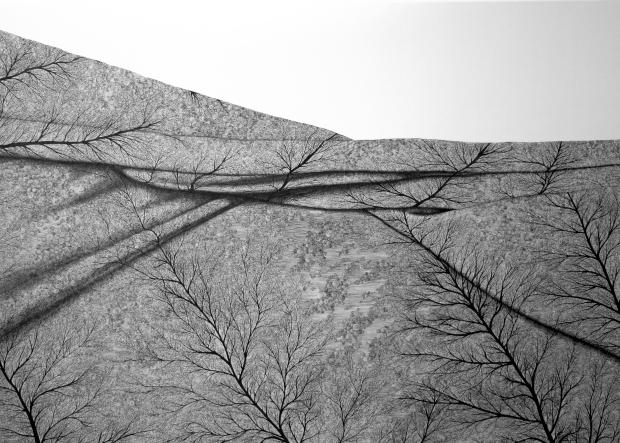 25-Scrittura Privata, 100x140,pennarello su tela, 2014