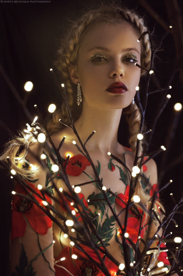 marta-bevacqua-life-of-dragon-flies-3