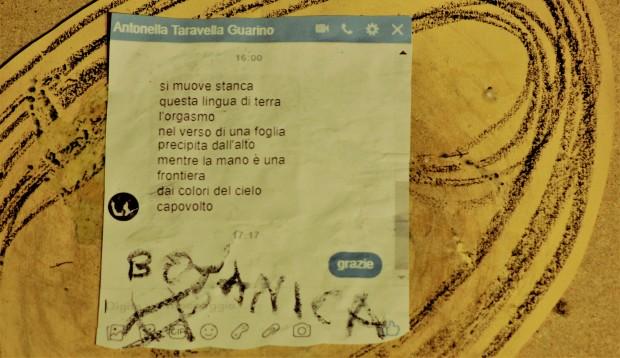 076_botanica_taravella
