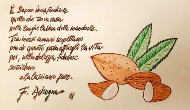 botanica francesco adragna